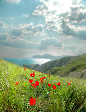 Весна в Орджоникидзе.
